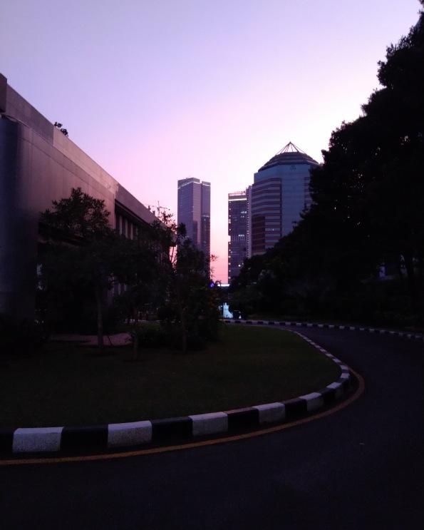 Morning Scenery
